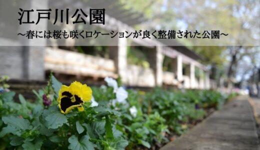 江戸川公園~春には桜も咲くロケーションが良く整備された公園~