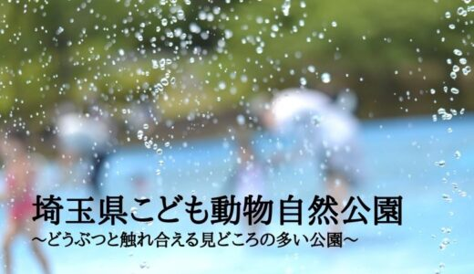 埼玉県こども動物自然公園~どうぶつと触れ合える見どころの多い公園~