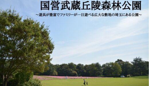 国営武蔵丘陵森林公園~遊具が豊富でファミリーが一日遊べる広大な敷地の埼玉にある公園~