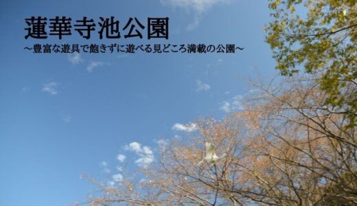 蓮華寺池公園~豊富な遊具で飽きずに遊べる自然の見どころ満載のおすすめ公園~