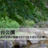 関口台公園~自然豊かで子供が探検できそうな文京区の公園~