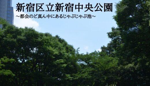 新宿区立新宿中央公園~都会のど真ん中にあるじゃぶじゃぶ池~