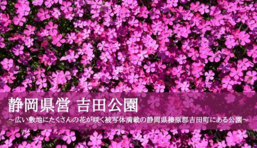 静岡県営 吉田公園~広い敷地にたくさんの花が咲く被写体満載の静岡県榛原郡吉田町にある公園~
