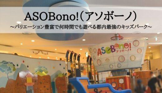 ASOBono!(アソボーノ)~バリエーション豊富で何時間でも遊べる都内最強のキッズパーク~
